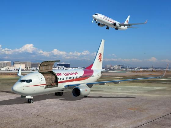 アルジェリア航空塗装 737-700Cと737-800