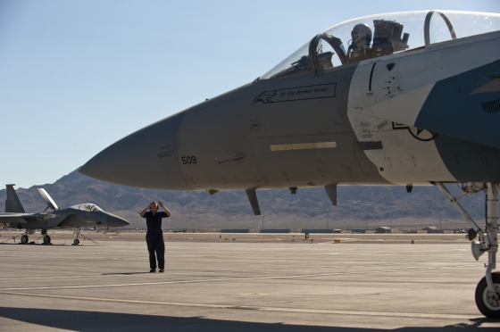 F-15アグレッサー飛行隊 第65仮想敵飛行隊(65AGRS)