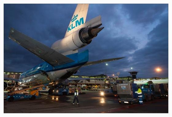 KLMオランダ航空 MD-11 尾翼にある3発目のエンジン