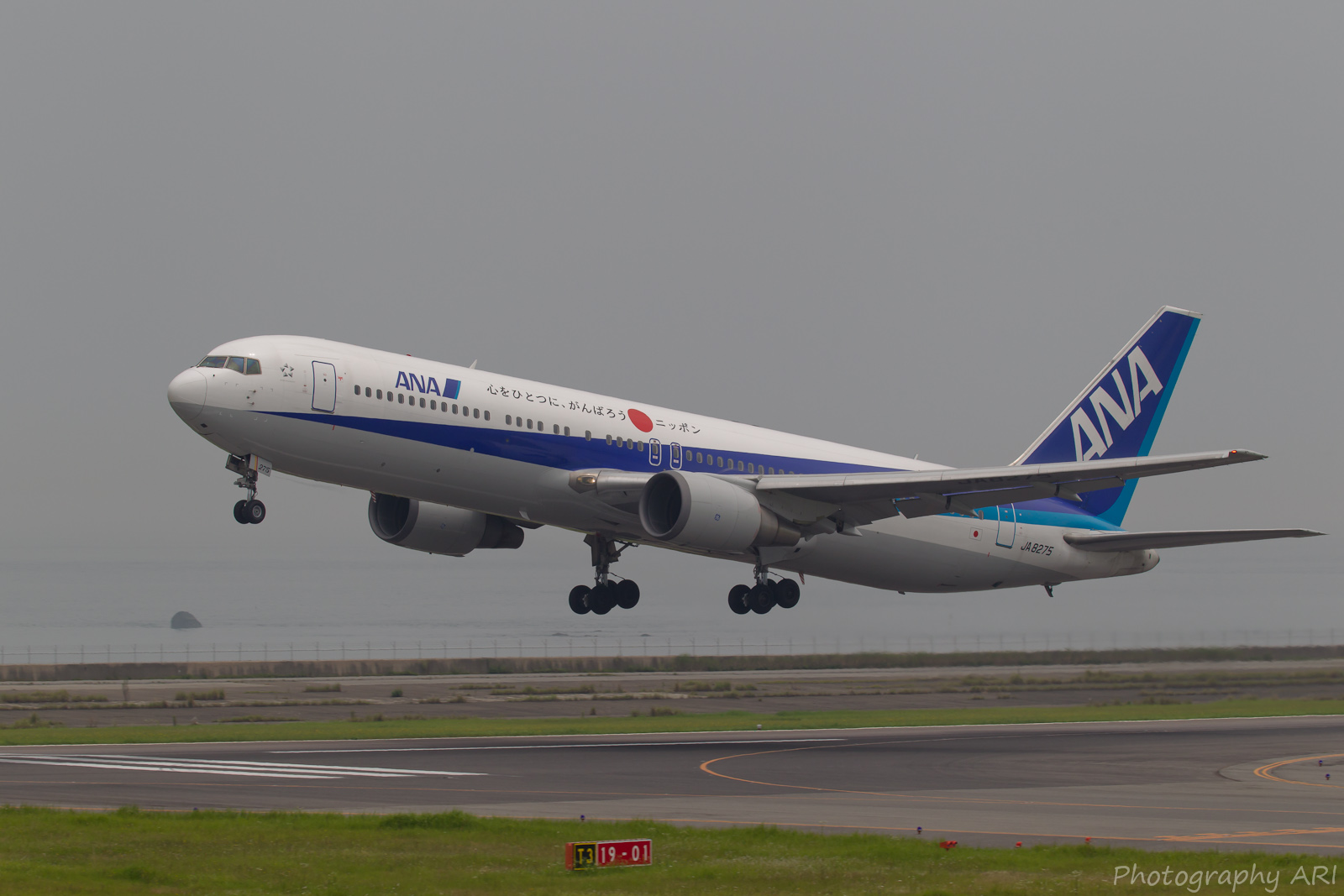 ANA B767-300